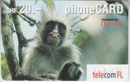 SWITZERLAND - PHONE CARD  ***   PRÉPAID CARD -  SINGE *** - Dschungel