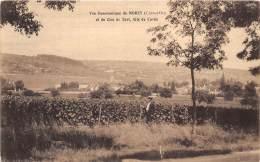 21 - COTE D' OR / Morey - 216191 - Vue Panoramique Prise Du Clos De Tart - Altri Comuni