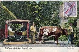 MADEIRA - Carro De Bois - Attelage Boeuf  - Registrado (104596) - Madeira