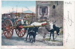 NAPOLI -Costumi - Un Carretto Per Via Marina - Attelage Boeuf Et Ane  (104597) - Italy