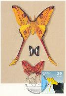 D33203 CARTE MAXIMUM CARD 2007 NETHERLANDS - TROPICAL BUTTERFLY - RARE POSTMARK CP ORIGINAL - Butterflies