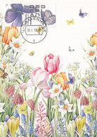 D33204 CARTE MAXIMUM CARD RR 2017 NETHERLANDS - PLEBEJUS ARGUS BLUE BUTTERLFY PAPILLON CP ORIGINAL - Butterflies