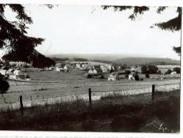Maissin Panorama Pris Du Bois De Haut Mont - Libin