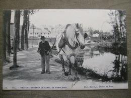 Cpa Hal Halle - Vieux Métier Haleur Longeant Le Canal De Charleroi - Halage Bateau - Phot. Bertels Laeken Bruxelles 1904 - Halle