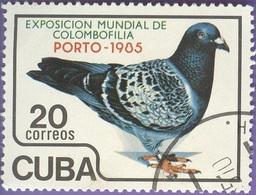 Cuba -  Fauna -  PORTO-85, International. Pigeon Exhibition -20 C - 1985 - Cuba