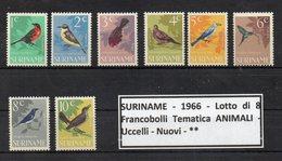 """SURINAME - 1966 - Lotto Di 8 Francobolli Tematica """" Animali - Uccelli """" - Nuovi - ** (FDC9248) - Suriname"""