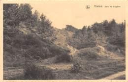 GISTOUX - Dans Les Bruyères - Chaumont-Gistoux