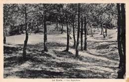 LE ZOUTE - Les Sapinières - Knokke