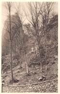 Rocher De Marche-les-Dames Où Notre Roi Bien-aimé, Albert Ier, Trouva La Mort Le 17 Février 1934 - Namur