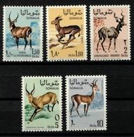 SOMALIA - 1968 ANIMALS - Somalia (1960-...)