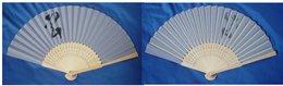 Folding Fan - Art Asiatique