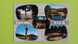 Cartolina SILA - CALABRIA - Viaggiata - Postcard - Vedutine - Italy