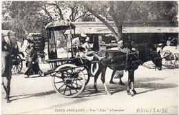 "Indes Anglaises - Une ""Eika"" A CAWNPOR .  Attelage Cheval      (104625) - Tonga"