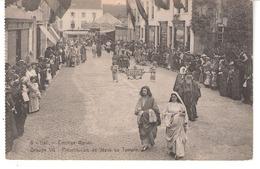 Halle- Hal-+/-1910-Cortège Marial-Maria's Leven-Présentation De Jésus Au Temple-Carrousel-Manège Au Bout De La Rue - Halle
