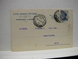 PADOVA --- DITTA PAGANI  VITTORIO -- FORMAGGI  E BURRO - Padova (Padua)