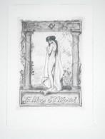 Ex-libris Moderne XXème Illustré -  Allemagne - Femme Nue Au Voile - S.F. MEISSL - Ex-libris