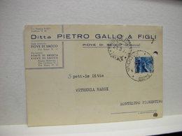 PIOVE DI SACCO  --- PADOVA  --  DITTA  PIETRO GALLO & FIGLI - Padova (Padua)