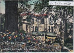 ADRIA (2) - Rovigo