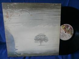 Genesis - 33t Vinyles - Wind & Wuthering - Disco & Pop