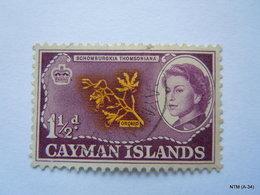 CAYMAN ISLANDS 1962, Queen Elizabeth II, Orchid, 1,1/2d. SG 167. Used. - Cayman Islands