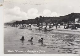 Pineto Teramo Spiaggia E Pineta Vg  G/t - Teramo