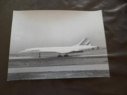 Photo Original Photographe Privé Aviation Commerciale 17.2 X 23 Concorde Roissy 29/09/1981 - Aviation