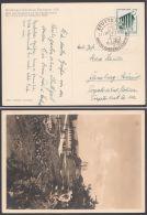 """MiNr. 692, EF Auf Sonderkarte """"Reichsgartenschau 1939"""", Pass. Sst. - Briefe U. Dokumente"""