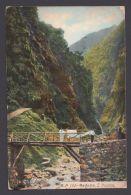 """""""Madeira"""", Farbig, 1910 Nach Deutschland Gelaufen - Ohne Zuordnung"""