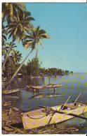 CPM/CPSM - TAHITI - La Plage à Punaauia - Polynésie Française