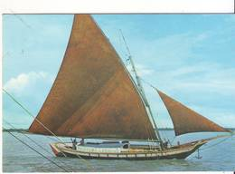 CPM/CPSM - Tapouille Brésilienne Dans Le Port De CAYENNE - Cayenne