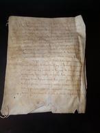Manuscrit Sur Peau De Porc Ou Chèvre 1692 Concernant Les Lieux Des Paleines ( Cuvée De Vins ?? ) - Manuscripts