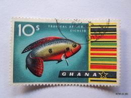 GHANA 1959, Tropical African Cichlid Fish, 10s. SG 225, Used. - Ghana (1957-...)