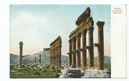 Postcard Syria Palmyre. Grande Collades  Unused - Syria