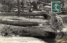 75 PARIS 12è - Le Bois De Vincennes Après Le Passage Du Cyclone - 16 Juin 1908 - Arrondissement: 12