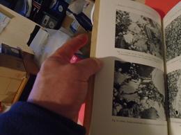 GEOLOGIE : ALGUNAS ROCHAS DA REGIAO DE MOURA BARRANCADOS NOTAS PETROGRAFICAS SOBRE ROCHAS SEDIMENTARES PORTUGUESAS - Livres, BD, Revues
