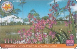 Thailand Phonecard Thaicard Kat. 4621  Flower Blumen Orchid Ma Wing - Tailandia