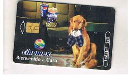 MESSICO (MEXICO) - CINEMEX, DOG - USED - RIF.   10788 - Mexico