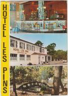 La Grière - Plage - La Tranche Sur Mer - L'hôtel Les Pins Son Bar Son Parc - La Tranche Sur Mer