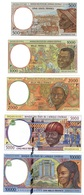 Central African St. CHAD / P - 500 1000 2000 5000 10000 Francs 2000 (letter P) AUNC Lemberg-Zp - États D'Afrique Centrale