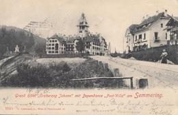 SEMMERING (NÖ) - Grand Hotel Erzherzog Johann Mit Dependance Post Villa, Litho Gel.1901 - Semmering