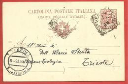 CARTOLINA POSTALE VG ITALIA - Tipo Floreale Vittorio Emanuele III - MARIO STENTA - 1906 TRIESTE - S. CP30 MILLESIMO 05 - Interi Postali