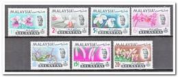 Maleisië Kelantan 1965, Postfris MNH, Flowers, Orchids - Maleisië (1964-...)