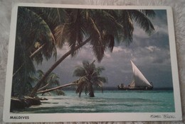 Asia - Maldives - Male Atoll - Michael Friedel 1995 - Maldive