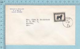 Canada - # 194, Cover Magog To Austin Quebec, Newfoundland Dog - Chiens