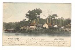 CONGO  BELGE  / PAYSAGE  CONGOLAIS / Edit.  NELS , Bruxelles  ( Cpa Précurseur Colorisée ) /  BEAU TIMBRE + CACHETS 1905 - Congo Belge - Autres