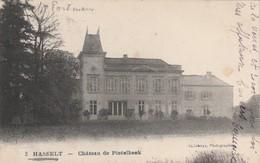 HASSELT ,  Château De PIETELBEEK  ,Het Kasteel - Hasselt