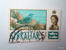 GIBRALTAR 1960, Queen Elizabeth II, 5s. Stamp On Bird 'blue Rock Thrush'. SG171. Used. - Gibraltar