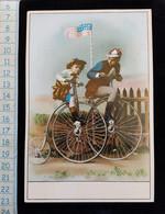 Grand Ancien Chromo   Cartonné Sans Legende, - Trade Cards