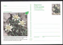 B123   Slovenia: 1996 Illustrated Postal Stationery Card, Edelweiss Unused - Slovenia