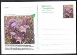 B124   Slovenia: 1996 Illustrated Postal Stationery Card, Pasque Flower, Pulsatilla Grandis Unused - Slovenia